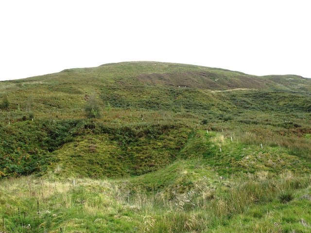 The northern slopes of Brown Fell