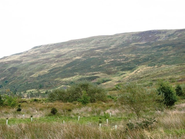 The northern slopes of the Tindale Fells east of Howgill