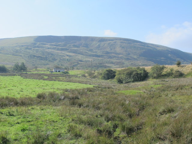Rough pastures near Howgill