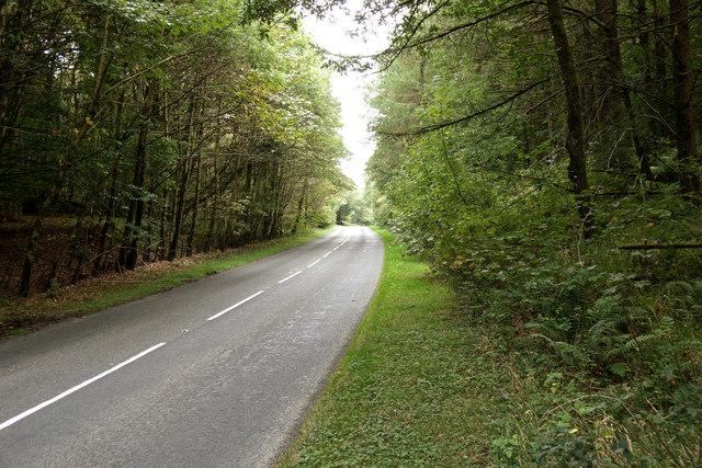 A714 through Cruives Wood