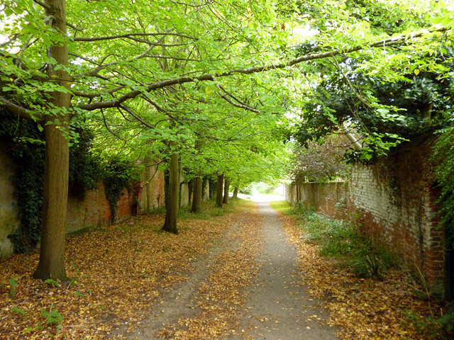 Footpath from Church Street to Alton Road
