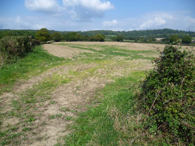 Footpath to the Greensand Ridge