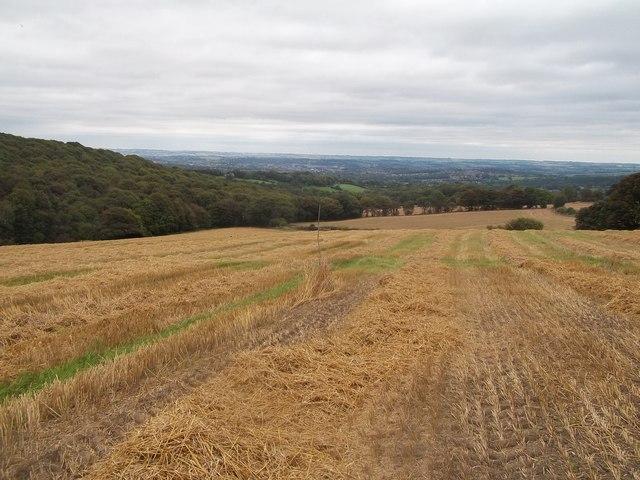 Field of Stubble near Loads House Farm