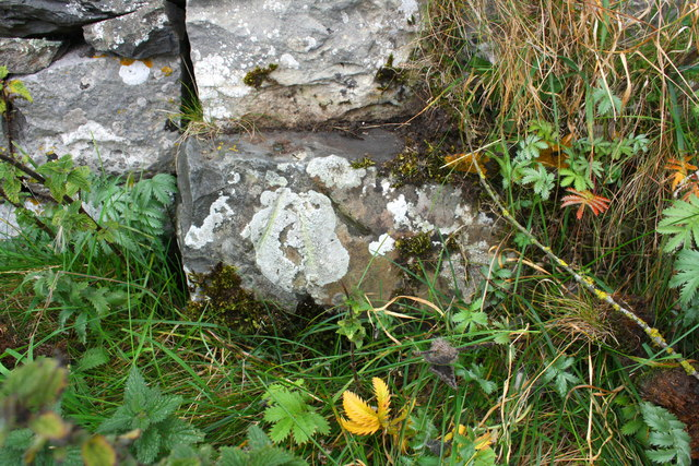 Benchmark on barn on north side of Townhead Lane