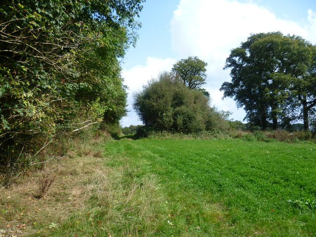 Footpath near Kiln Wood