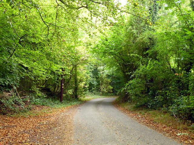 Pickaxe Lane