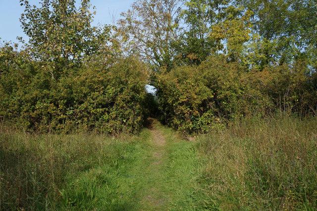 Wales  Coast Path towards Pencoed