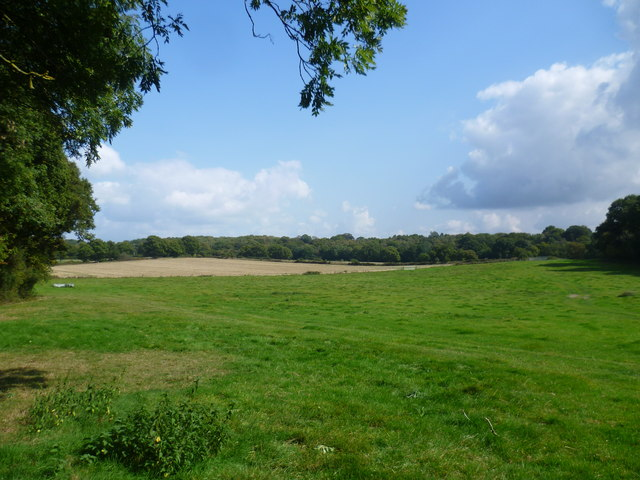 Fields belonging to Faulkners Hill Farm
