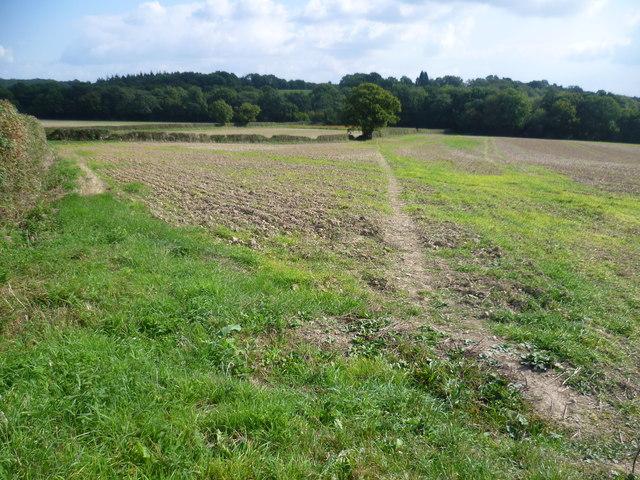 Footpath to Scollops Farm
