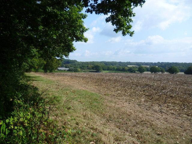Looking towards Long Meadow Farm