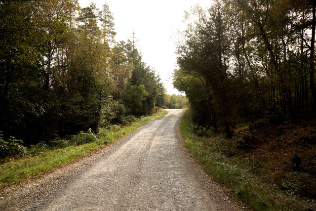 Penninghame path 1