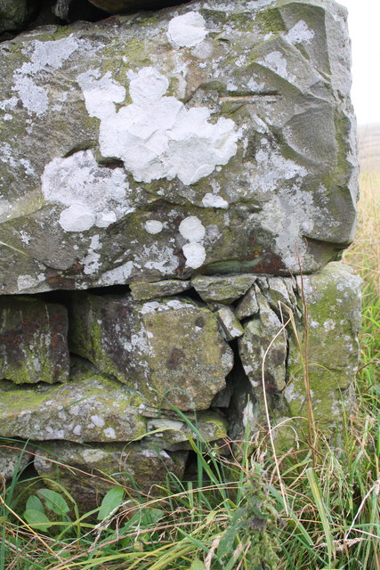 Benchmark on ruined barn south of Banks
