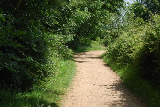 Footpath near Alton Water