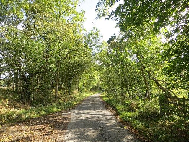 Minor road, Westmuir