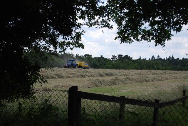 Mowing hay, Argent Manor Farm