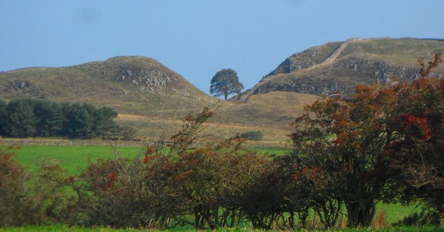 Across the fields to Sycamore Gap