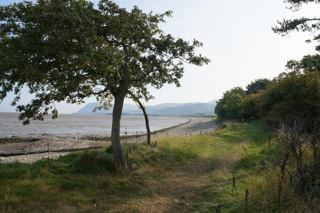 Wales  Coast Path at Coed Cyfynys