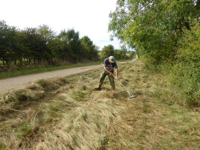 Not Haymaking