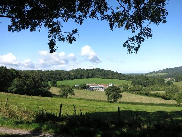 Towards Model Farm