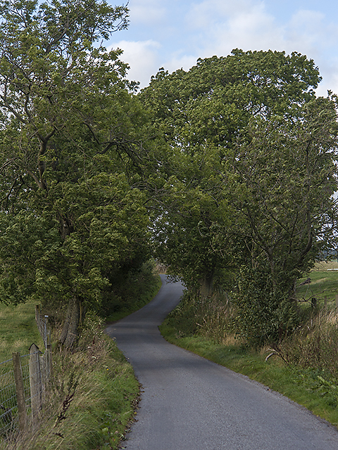 Minor road south of Meikle Seggie