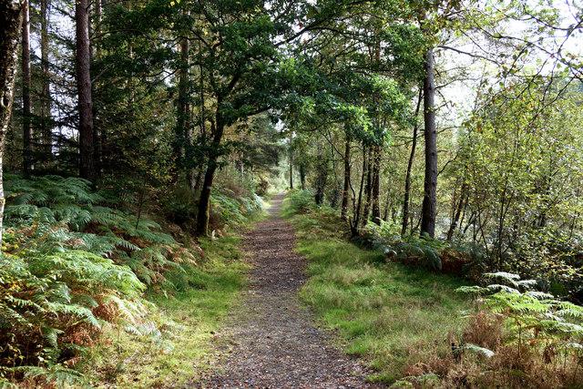 Alongside Castle Stewart Loch