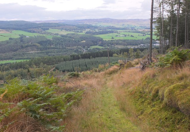 The Tummel valley from Logierait Woods