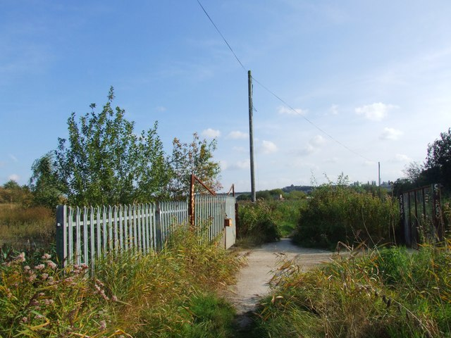 Site of the old Sewage Works, Swanscombe Marshes