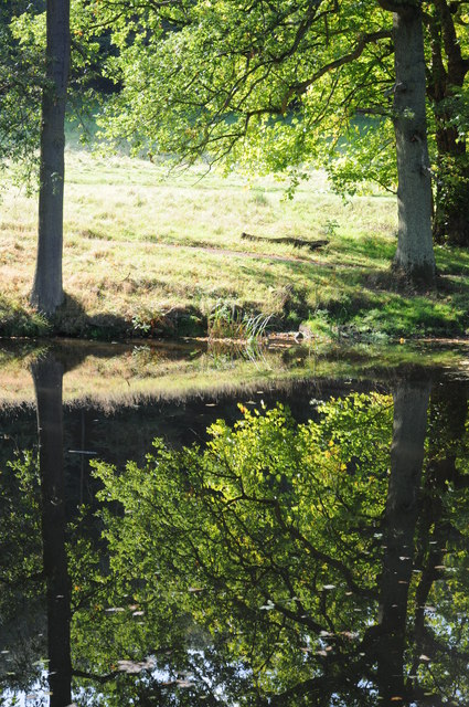Reflections in Hagley Park