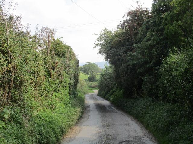 Lane to Minsterworth Ham