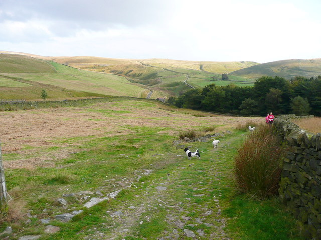 The Pennine Bridleway descending to Cold Greave Clough