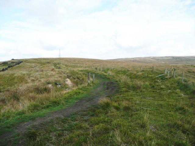 Bridleway on the Windy Hills ridge