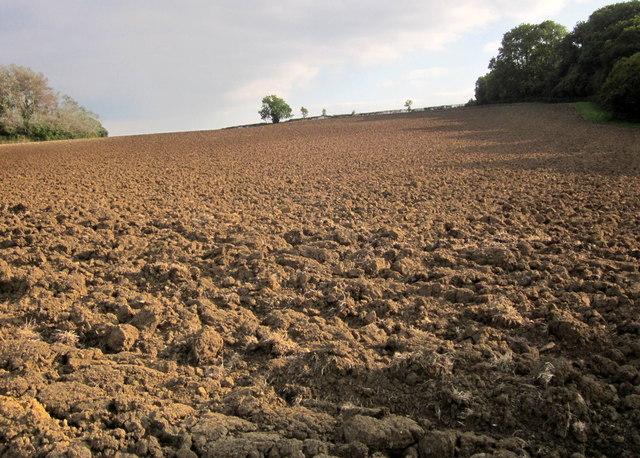 Ploughed field near East Wood
