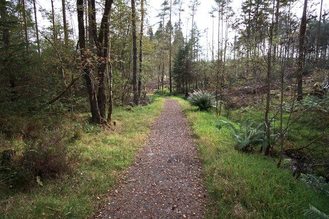 Penninghame path 11