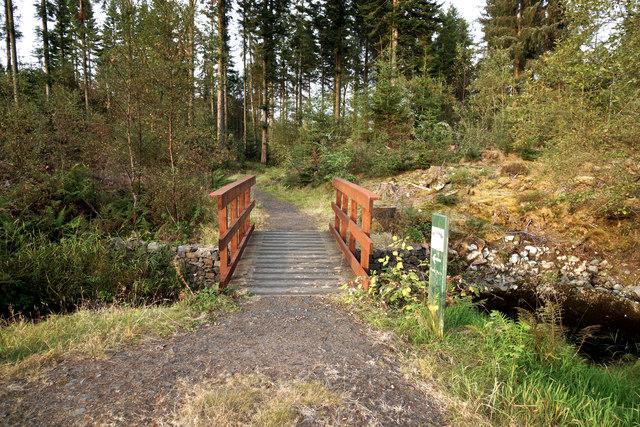Penninghame path 12