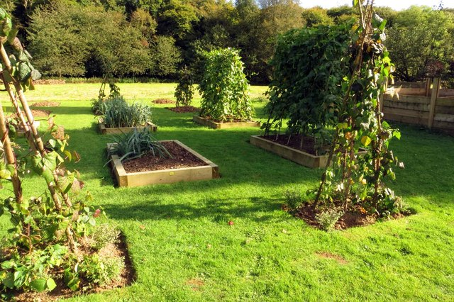 The vegetable garden at Nuffield Place