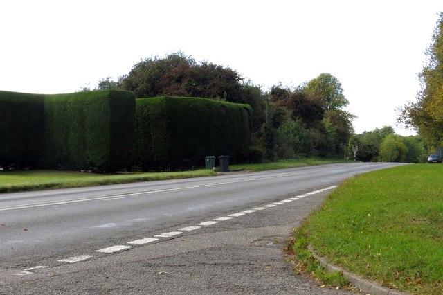 Gangsdown Hill to Wallingford