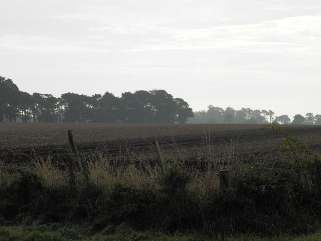 Ploughed field at Pitskelly