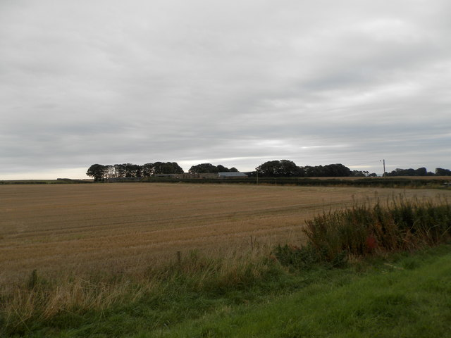 Field near Pitskelly