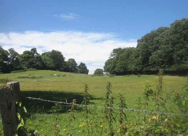 Hawley Park Farm