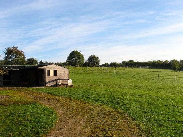 Barn Field