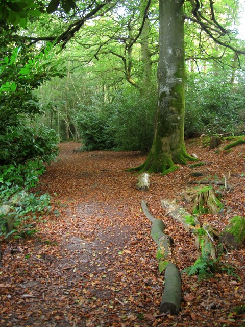 Footpath to Colwood Park