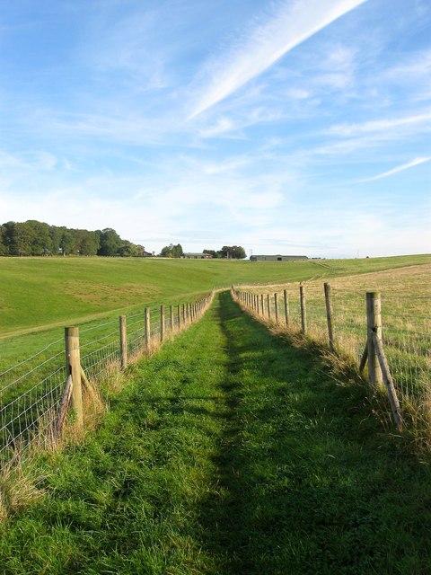 Bridleway to Rout Farm