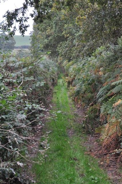 Mid Devon : Scratchface Lane