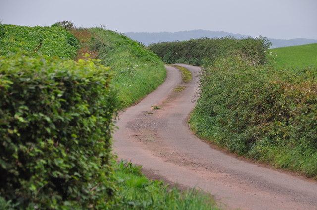 Mid Devon : Crownhill Lane