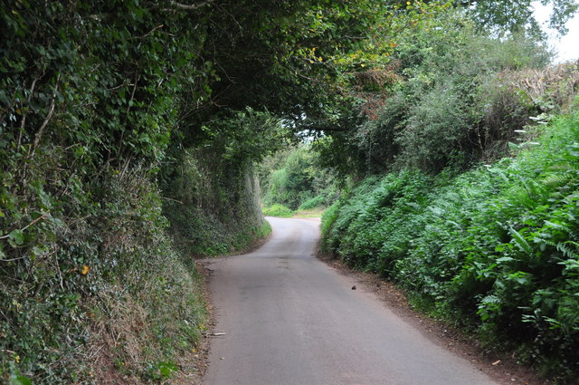 Mid Devon : Country Lane
