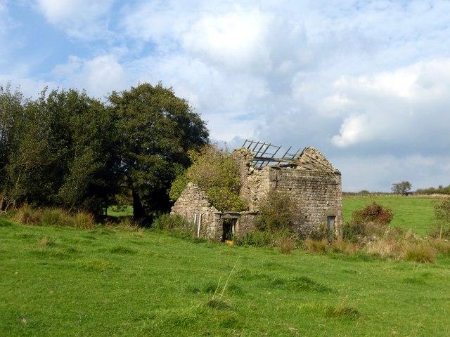 Ruined field barn
