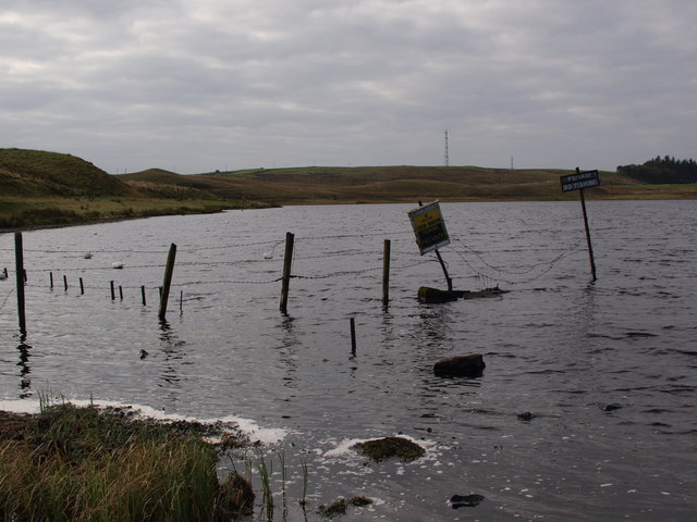 Northeast corner of Black Loch