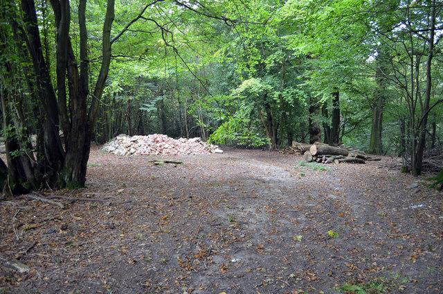 Rubble dumped in Furnace Wood