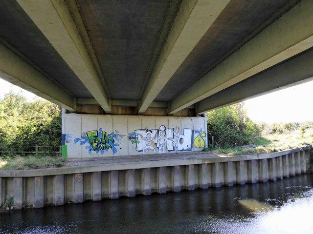 Wild graffiti on Dearne Valley Parkway bridge abutment spanning the River Dearne