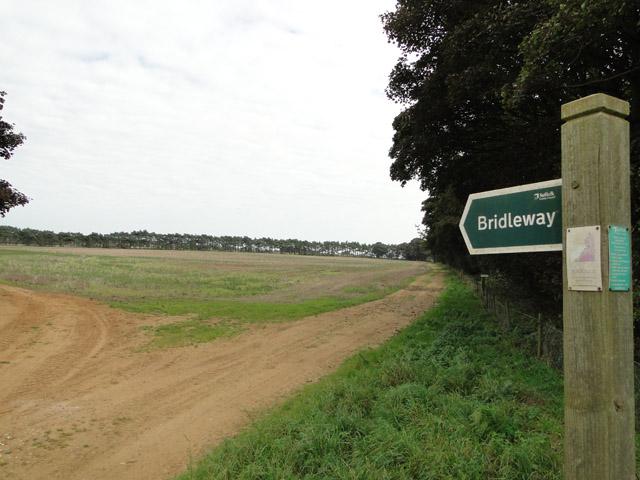 Bridleway near Alderton walks